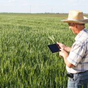 Farmers are increasingly leveraging information technology.