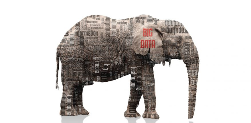 Illustration of elephant with big data language displayed on it