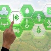 Conceptual image of IoT used for agriculture